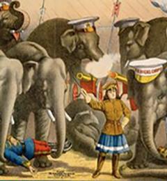 De olifant, een circus icoon