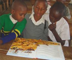 Phanhabs Savanna – Lernmaterial für Momella Schulen