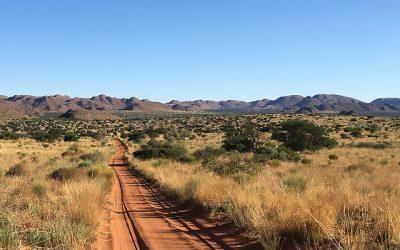 Abundance in the Kalahari