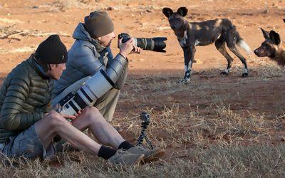 Wild dogs and dagga boys in Laikipia