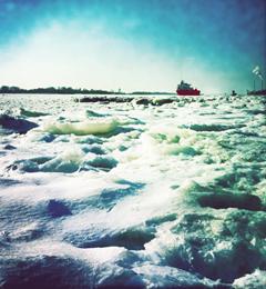 Der Winter ist zurück an der Elbe